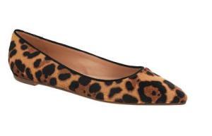 Leopard JCrew2