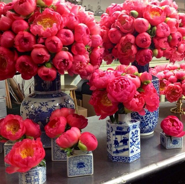 blue and white with profusion of pink peonies